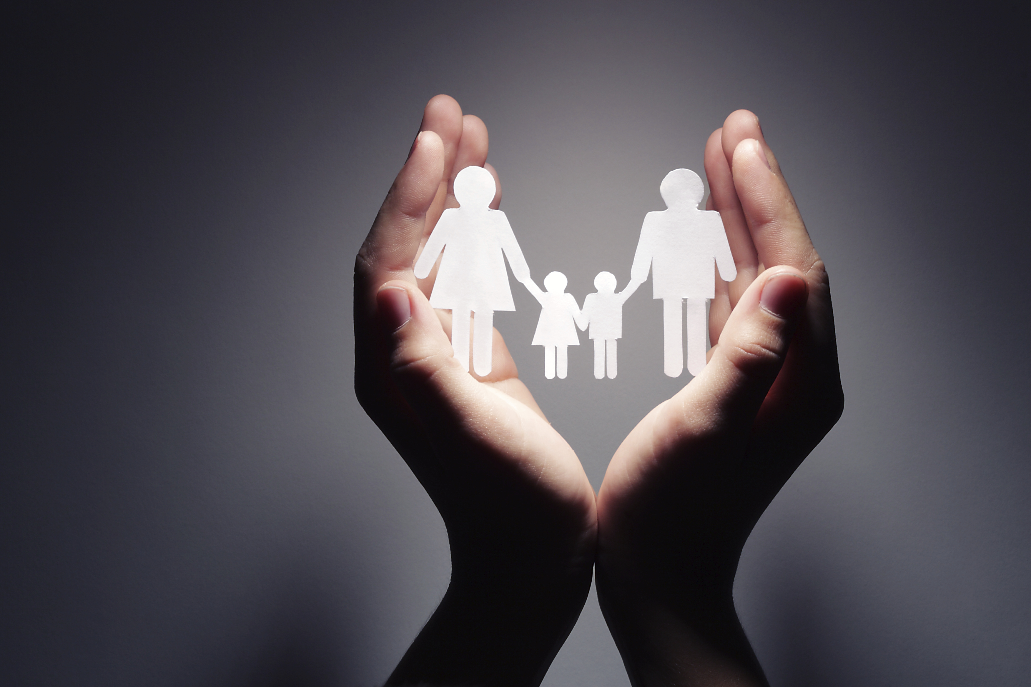 Family law specialist